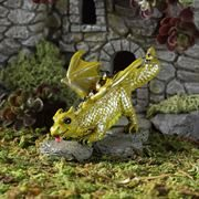 Prowling Dragon- Fiddlehead miniature gardens