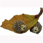 Fairy Garden Figurines- Twin Hedgehogs (Fiddlehead)