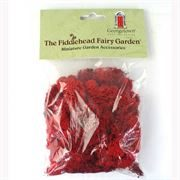 Fiddlehead Fairy Gardens- red moss
